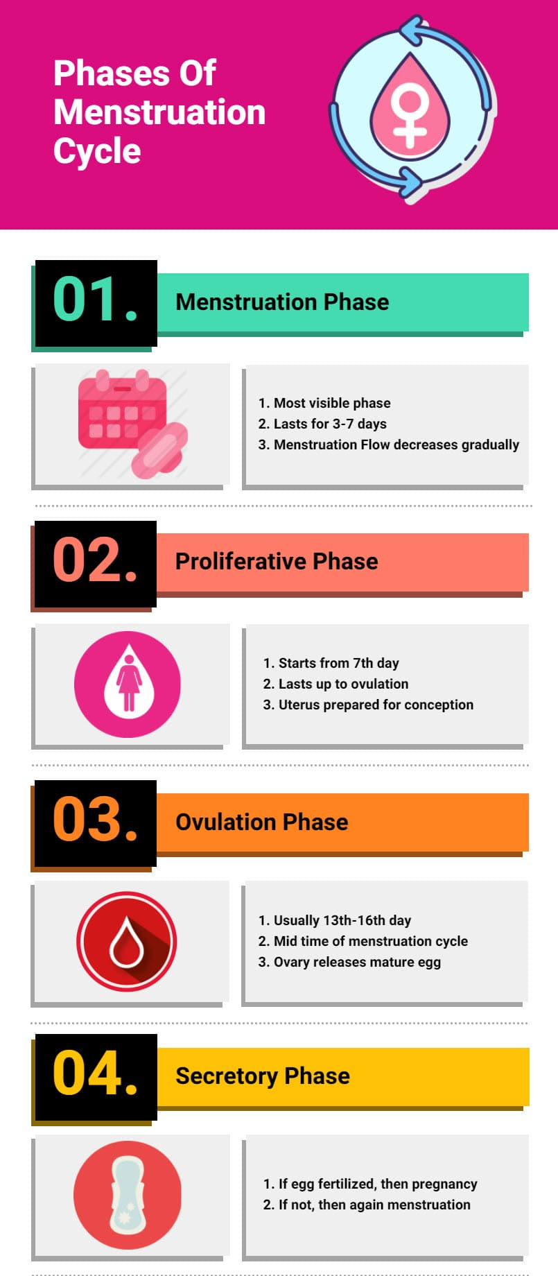 infographic Menstruation